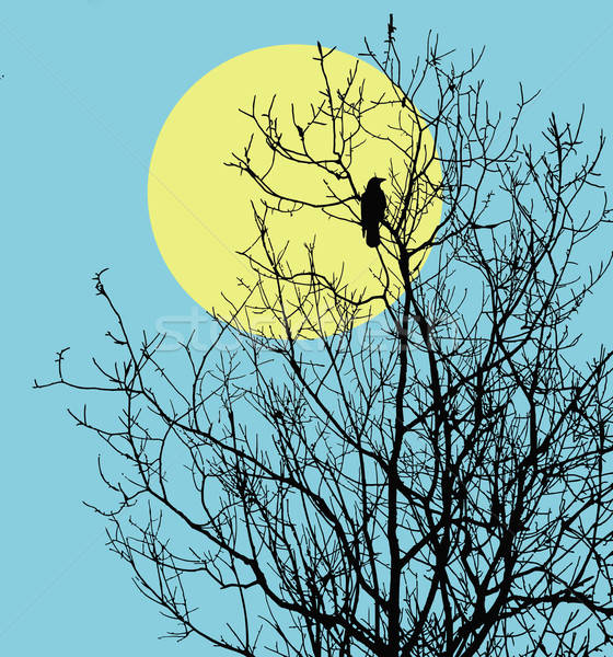 Vektör çizim oturma ağaç güneş dizayn Stok fotoğraf © basel101658
