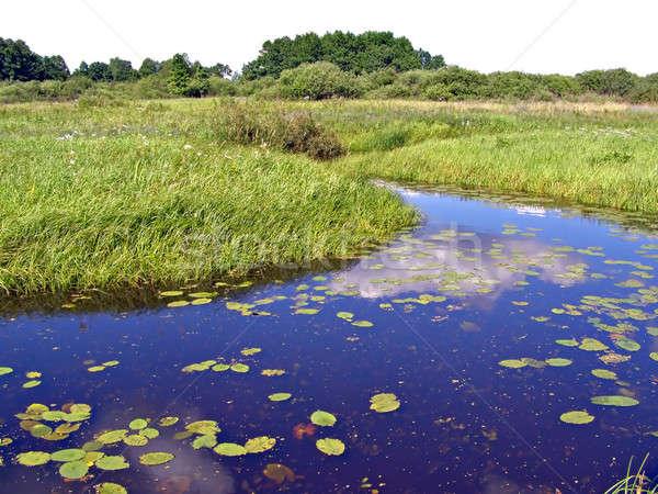 Pequeño río campo playa naturaleza paisaje Foto stock © basel101658