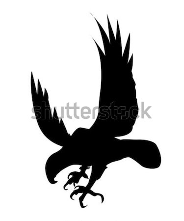 Vetor desenho silhueta pássaro branco fundo Foto stock © basel101658