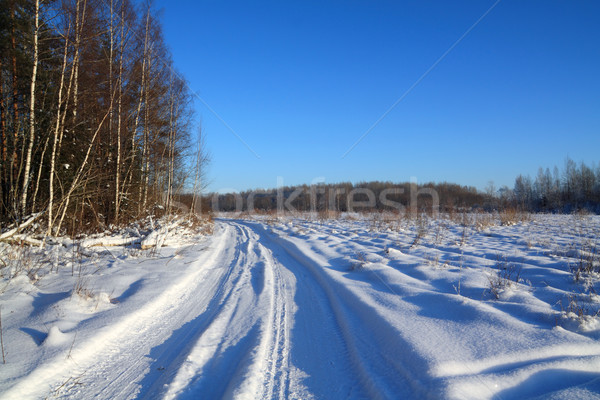 winter road Stock photo © basel101658