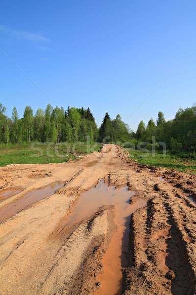 dirty rural road Stock photo © basel101658
