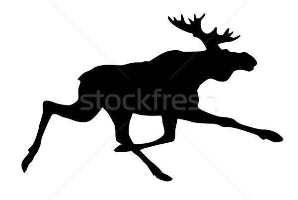 Vettore disegno silhouette Moose bianco design Foto d'archivio © basel101658