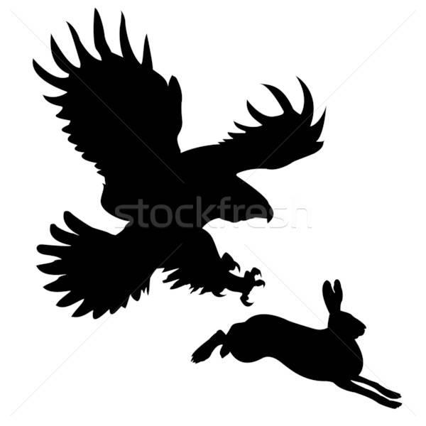 Zdjęcia stock: Sylwetka · ptaków · zając · projektu · królik · tle