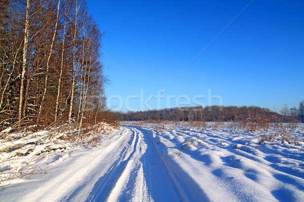 Rural carretera árbol madera forestales naturaleza Foto stock © basel101658