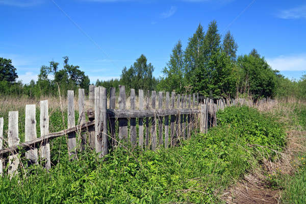 old wooden fence Stock photo © basel101658