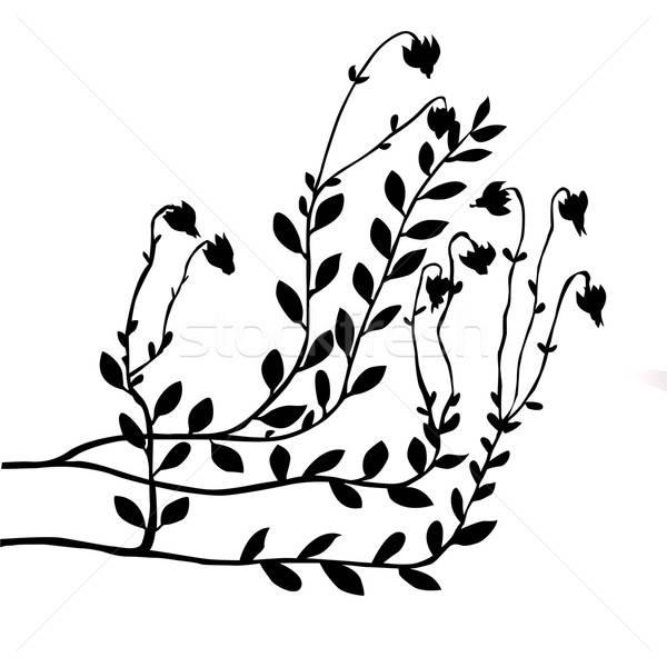 Zdjęcia stock: Wektora · żurawina · Bush · biały · charakter · tle