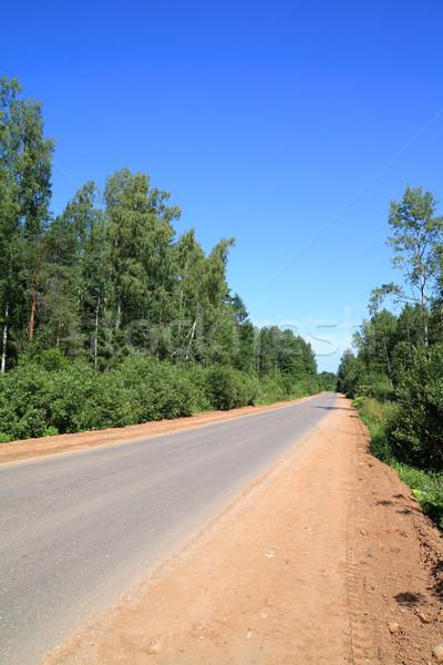 Strada legno cielo albero foresta blu Foto d'archivio © basel101658