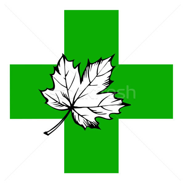 maple leaf on green cross Stock photo © basel101658