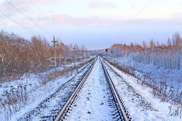 railway in winter Stock photo © basel101658