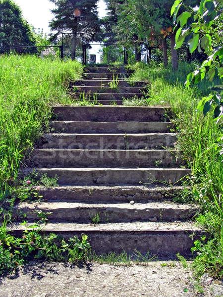 Yaşlanma merdiven çiçek çim ev bahçe Stok fotoğraf © basel101658