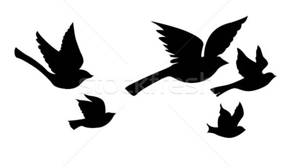 vector silhouette flying birds on white background Stock photo © basel101658