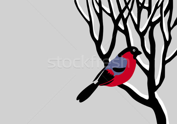 vector drawing bullfinch on tree Stock photo © basel101658