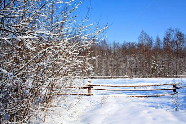 Vecchio recinzione albero legno abstract industria Foto d'archivio © basel101658