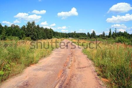 Veroudering landelijk weg voorjaar gras hout Stockfoto © basel101658