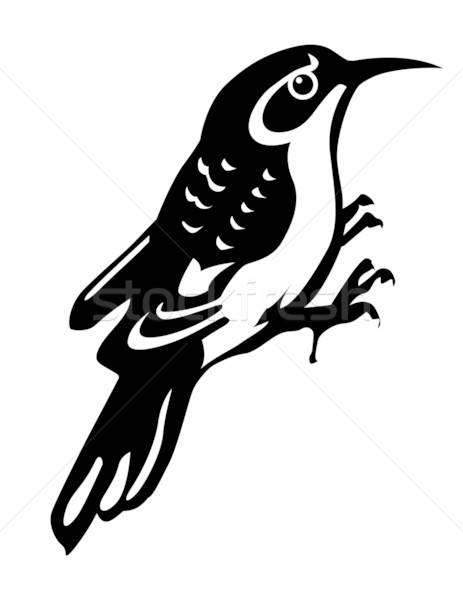 vector silhouette of the timber bird on white background Stock photo © basel101658