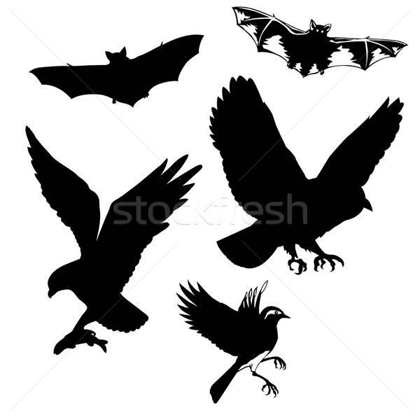 Vetor desenho aves fundo assinar grupo Foto stock © basel101658