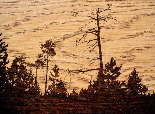 Vettore disegno legno costruzione foresta abstract Foto d'archivio © basel101658