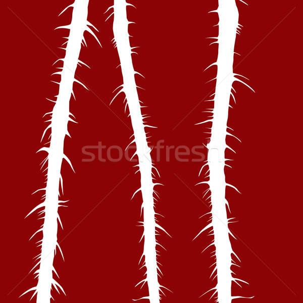 vector illustration stalk wild rose on red background Stock photo © basel101658