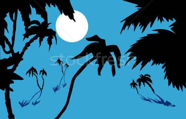 Vector tropische boom bos zonsondergang landschap Stockfoto © basel101658
