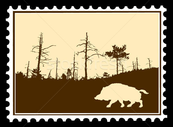 vector silhouette wild boar on postage stamps Stock photo © basel101658