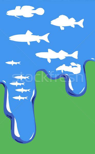Vector dibujo peces agua verde mar Foto stock © basel101658