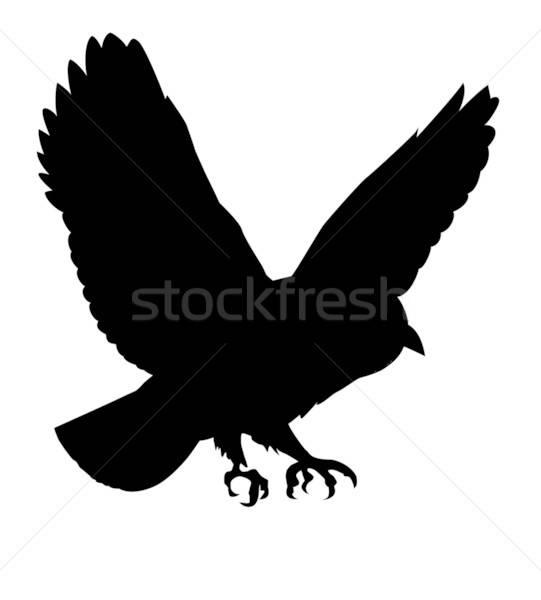 Vettore disegno silhouette uccello bianco natura Foto d'archivio © basel101658