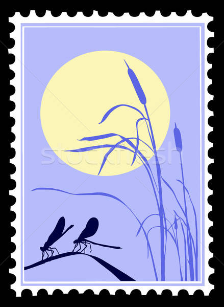 vector silhouette dragonfly on postage stamps Stock photo © basel101658