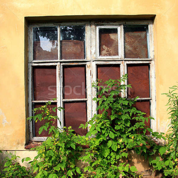 window in abandoned house Stock photo © basel101658