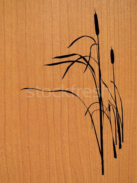 vector drawing Stock photo © basel101658