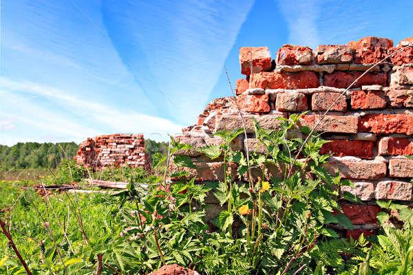 Vernietigd muur hemel voorjaar muur verf Stockfoto © basel101658