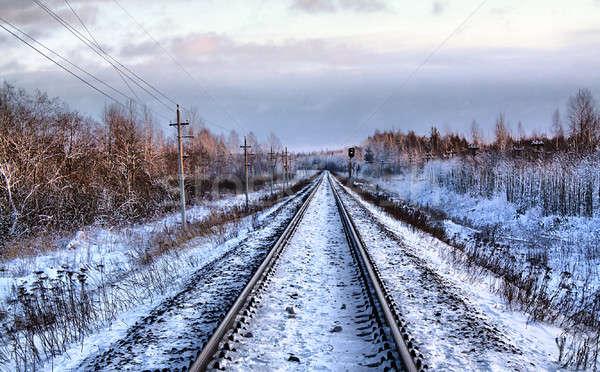 鉄道 冬 hdr ツリー 木材 雪 ストックフォト © basel101658