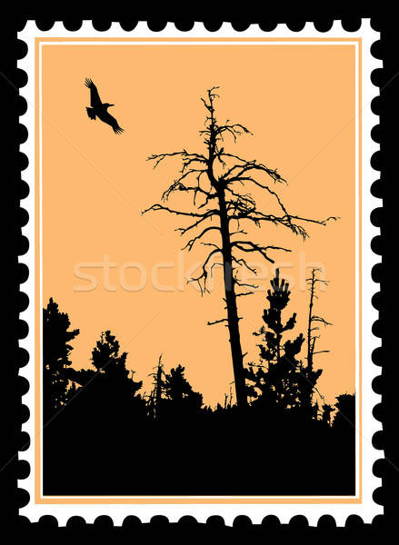 vector silhouette flying birds on postage stamps Stock photo © basel101658