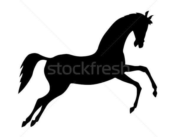 vector silhouette on white background Stock photo © basel101658