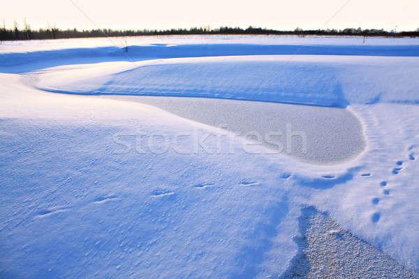 Invierno paisaje madera forestales naturaleza nieve Foto stock © basel101658