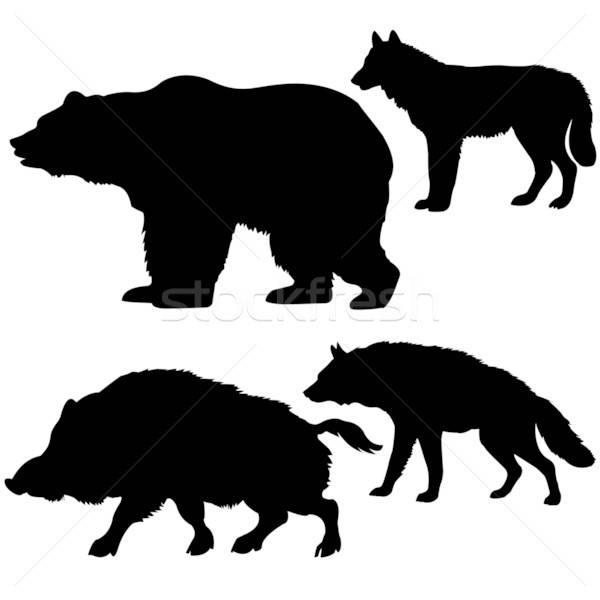 Silhouetten Wildschwein tragen Wolf Hyäne Stock foto © basel101658