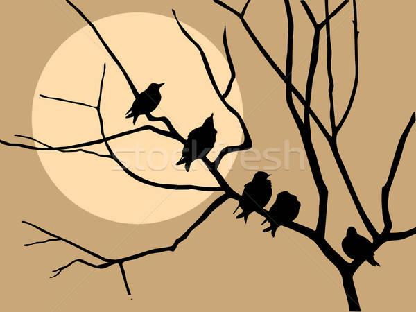 Vettore disegno illustrazione ramo albero primavera Foto d'archivio © basel101658