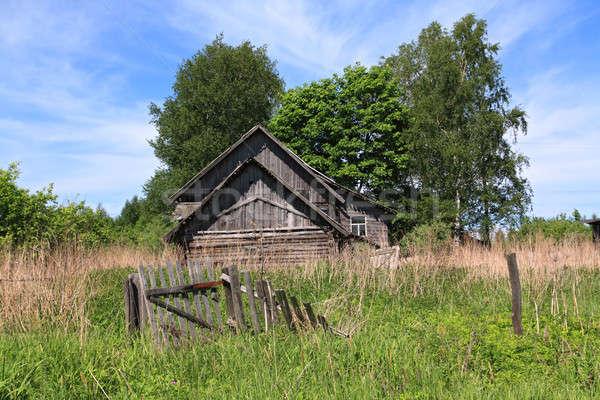 Edad rural casa árbol pared pintura Foto stock © basel101658