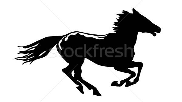 Vector dibujo silueta caballo blanco resumen Foto stock © basel101658