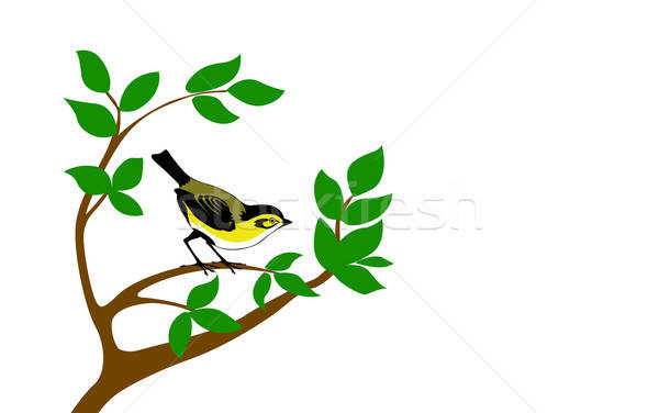 vector silhouette bird on tree Stock photo © basel101658