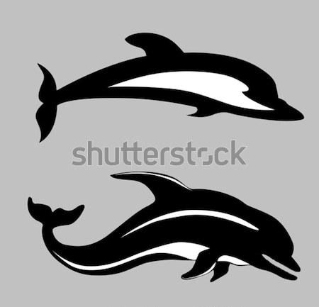 Wektora sylwetka Delfin biały tle sztuki Zdjęcia stock © basel101658