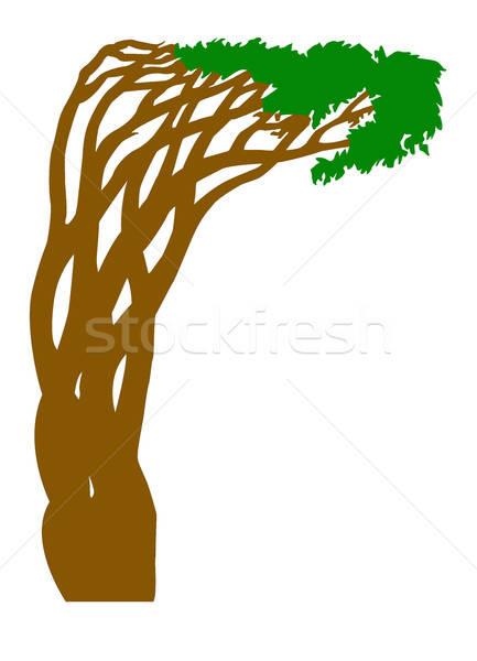 Vetor desenho silhueta abstrato árvore branco Foto stock © basel101658