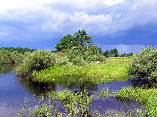 Piccolo fiume temporale spiaggia cielo albero Foto d'archivio © basel101658
