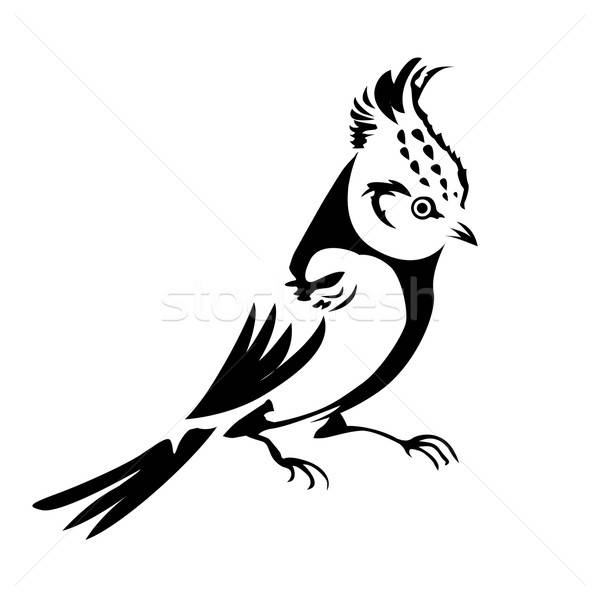 vector silhouette of the small bird on white background Stock photo © basel101658