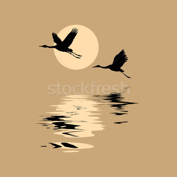 vector silhouettes flying cranes on background sun Stock photo © basel101658