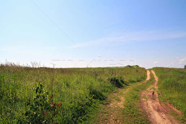 rural road on field Stock photo © basel101658