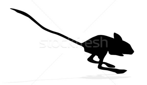 Vektör çizim siluetleri dizayn fare arka plan Stok fotoğraf © basel101658