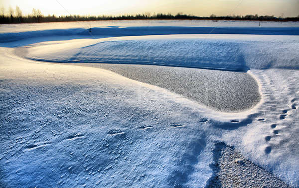 Kicsi folyó hó mező hdr fa Stock fotó © basel101658