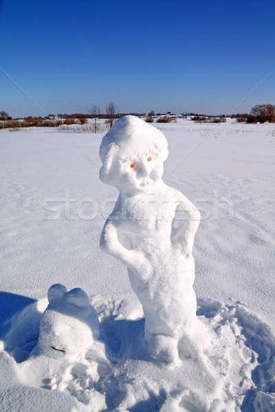 Hóember arc hó utazás jókedv szín Stock fotó © basel101658