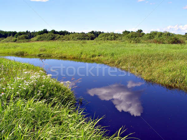 Stock photo: small river on yellow autumn field