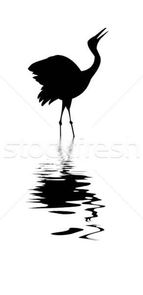 ベクトル 図面 シルエット クレーン 白 水 ストックフォト © basel101658